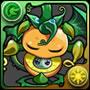 1087グリーンドラゴンフルーツ