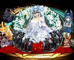 5382-孤峰の花嫁・ゼラ